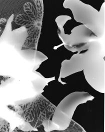 scan-photogram